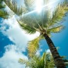 Les Bahamas : un lieu de villégiature paradisiaque