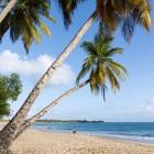 Découvrir la Martinique à bord d'un voilier